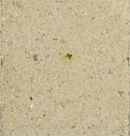 Оттенок камня №7